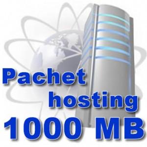 Pachet gazduire 1000 MB