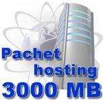 Pachet hosting 3000 MB